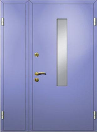 Тамбурная дверь окрас порошок
